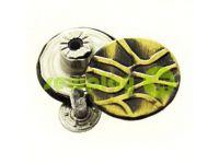 "Buttons denim stainless ""Cover"" 17 mm, color antique, 10 pcs"
